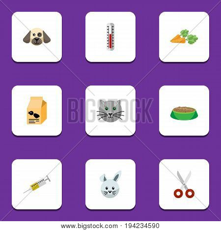 Flat Icon Pets Set Of Vaccine, Nutrition Box, Kitty And Other Vector Objects. Also Includes Thermometer, Box, Temperature Elements.