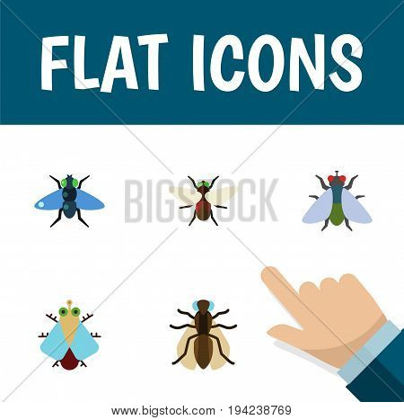 Flat Icon Fly Set Of Fly, Mosquito, Bluebottle And Other Vector Objects. Also Includes Hum, Fly, Buzz Elements.