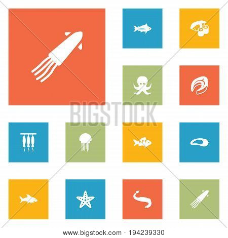 Set Of 12 Food Icons Set.Collection Of Devilfish, Japanese Roll, Acne And Other Elements.