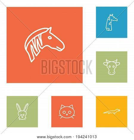 Set Of 6 Zoo Outline Icons Set.Collection Of Mammal, Cow, Lizard And Other Elements.