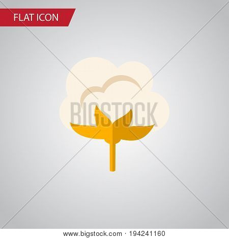 Isolated Cotton Flat Icon. Flower Vector Element Can Be Used For Cotton, Flower, Organic Design Concept.
