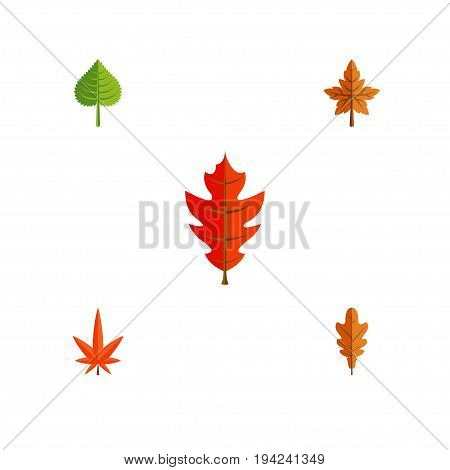 Flat Icon Maple Set Of Hickory, Linden, Alder And Other Vector Objects. Also Includes Alder, Foliage, Aspen Elements.