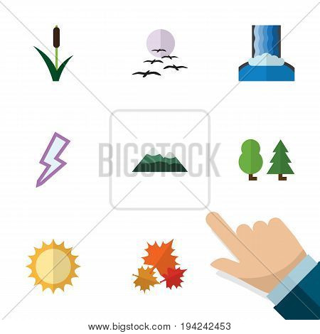 Flat Icon Natural Set Of Cattail, Lightning, Gull And Other Vector Objects. Also Includes Leaf, Tree, Pinnacle Elements.