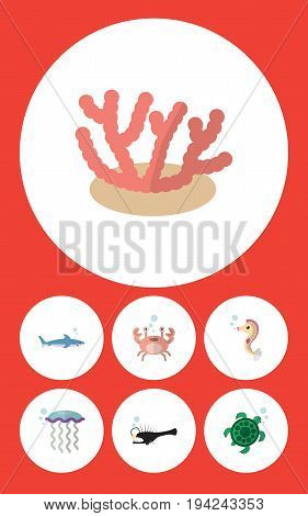 Flat Icon Marine Set Of Cancer, Fish, Shark And Other Vector Objects. Also Includes Horse, Seaweed, Jellyfish Elements.