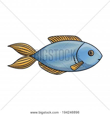 colored pencil silhouette of blue trout fish vector illustration