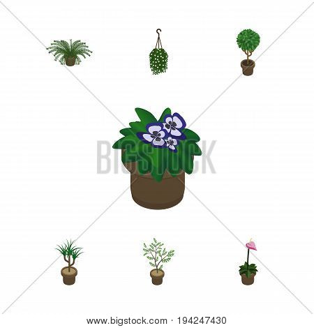 Isometric Houseplant Set Of Blossom, Grower, Houseplant And Other Vector Objects. Also Includes Pot, Flower, Plant Elements.