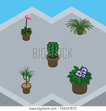 Isometric Flower Set Of Grower, Houseplant, Peyote And Other Vector Objects. Also Includes Botany, Flower, Flowerpot Elements.