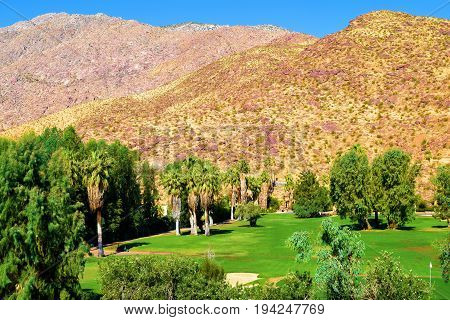 Golf Course with lush green landscaping surrounded by arid dry mountains beyond taken in Palm Springs, CA