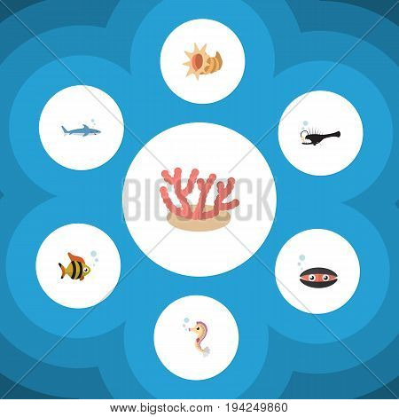 Flat Icon Marine Set Of Algae, Fish, Shark And Other Vector Objects. Also Includes Tuna, Angler, Algae Elements.