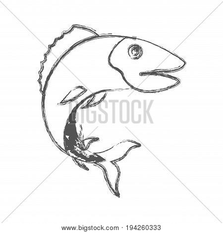 blurred sketch silhouette of trout fish vector illustration