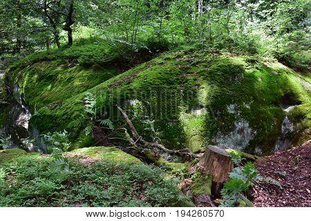 Nature reserve Pulcinske skaly in Beskydy mountains,Czech republic