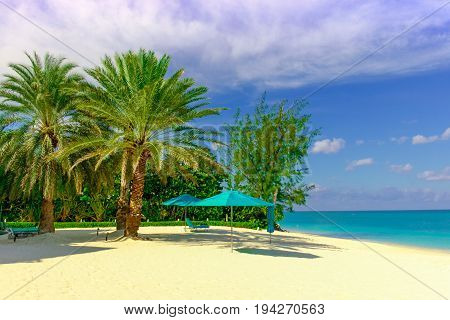 Seven Mile beach by the Caribbean sea, Grand Cayman