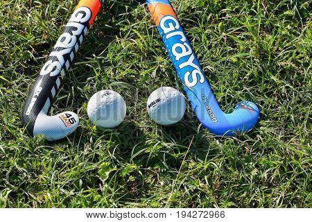 hockey sticks and balls for hockey grass