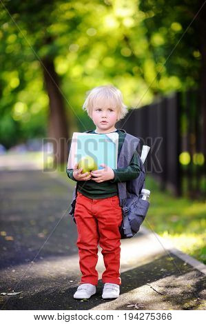 Unhappy Little Schoolboy On Sunny Autumn Day. Back To School Concept.