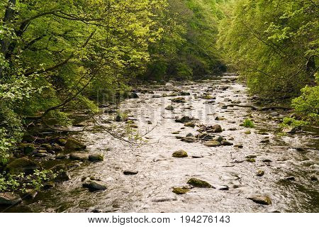 The River Bode in Thale in the Harz National Park in Germany