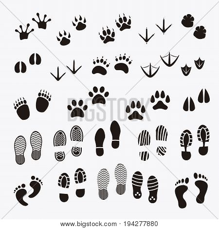 A collection of foot print of animals and people