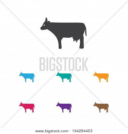 Vector Illustration Of Zoology Symbol On Cow Icon. Premium Quality Isolated Kine Element In Trendy Flat Style.