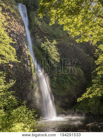 Horsetail falls in the Columbia River Gorge Oregon.