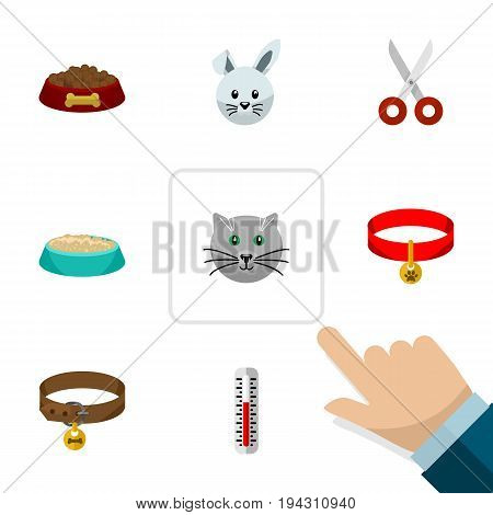 Flat Icon Animal Set Of Hound Necklace, Dog Food, Shears And Other Vector Objects. Also Includes Cat, Collar, Pussy Elements.