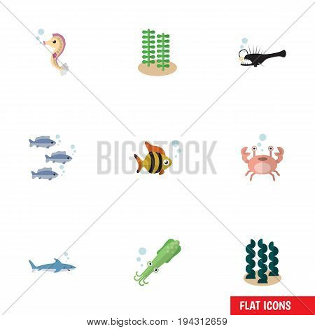 Flat Icon Nature Set Of Shark, Seafood, Cancer And Other Vector Objects. Also Includes Angler, Crab, Tuna Elements.