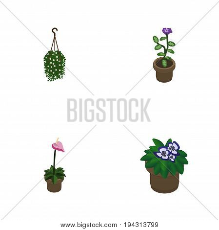 Isometric Houseplant Set Of Flower, Flowerpot, Blossom And Other Vector Objects. Also Includes Flowerpot, Hanging, Pot Elements.