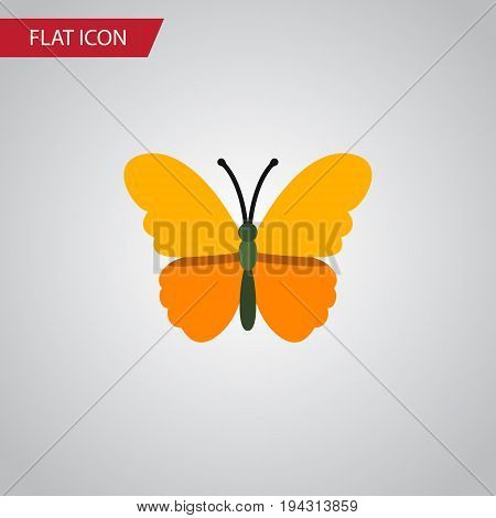 Isolated Danaus Plexippus Flat Icon. Butterfly Vector Element Can Be Used For Butterfly, Monarch, Moth Design Concept.