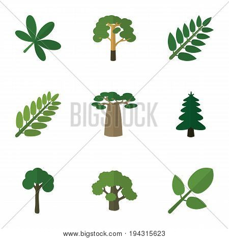 Flat Icon Ecology Set Of Leaves, Tree, Maple And Other Vector Objects. Also Includes Baobab, Park, Spruce Elements.