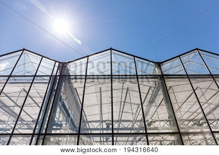 Row Of Greenhouses Under Clear Blue Sky