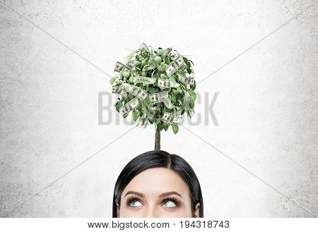 Close up of a cheerful young businesswoman s head near a gray wall with a dollar tree above her.