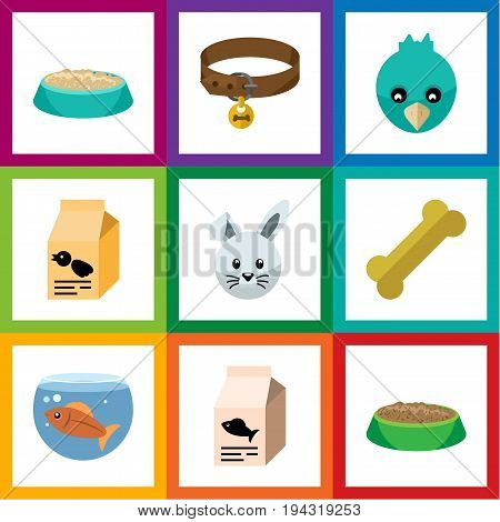 Flat Icon Animal Set Of Nutrition Box, Feeding, Rabbit Meal And Other Vector Objects. Also Includes Aquatic, Fishbowl, Bird Elements.