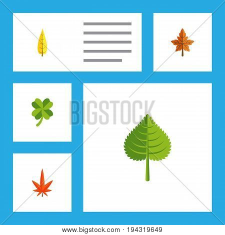 Flat Icon Leaves Set Of Alder, Maple, Aspen And Other Vector Objects. Also Includes Alder, Leaf, Hickory Elements.