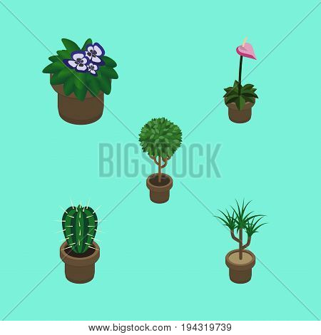 Isometric Flower Set Of Flowerpot, Tree, Peyote And Other Vector Objects. Also Includes Plant, Botany, Cactus Elements.