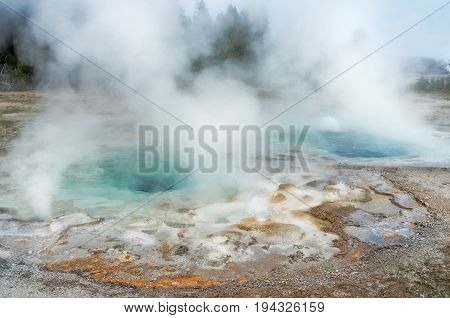 Smasmodic Geyser In Yellowstone National Park, Usa