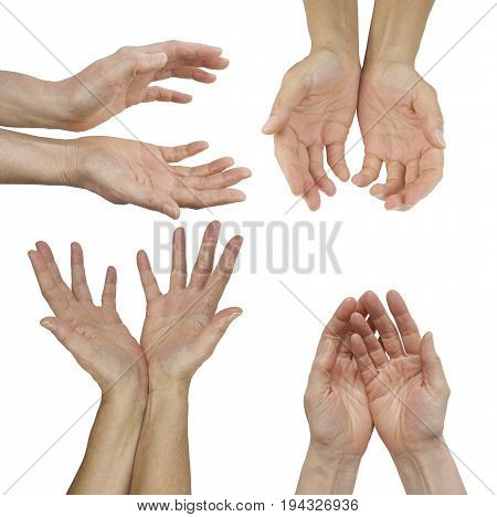 The Hands of an Energy Healing Practitioner - female hands in four different cupped position isolated on a  background