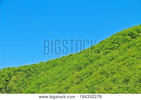 The line between green land and clear blue sky