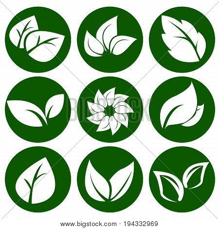 White leaves on a round green button. Elements for eco and bio logos. Vector Illustration