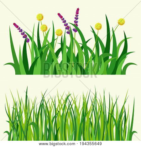 Green grass nature design elements vector illustration isolated grow agriculture nature background. Spring garden texture land season natural plants.