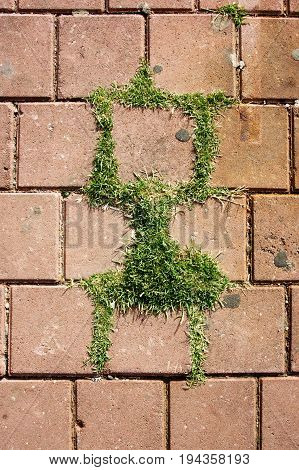 Abstract grass figure on the road grass grows throung tiles