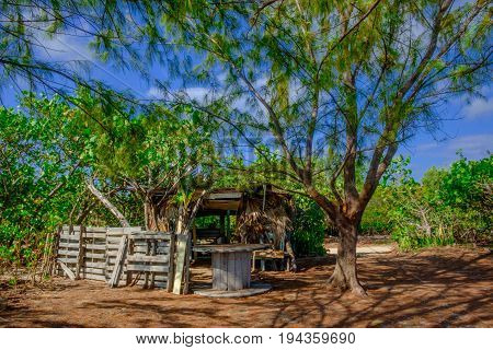 Abandoned derelict shack on Grand Cayman coast