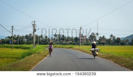 Rural Road In Mekong Delta, Vietnam