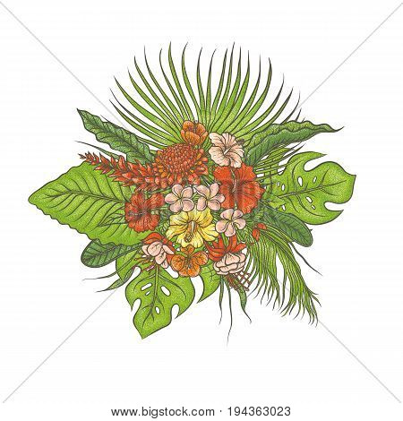 Vector sketch colored texture set composition bouquet. Green leaves of tropical plants, exotic pink and red flowers buds. Graphic outline drawing collection herb and vegetation monsoon rainforest