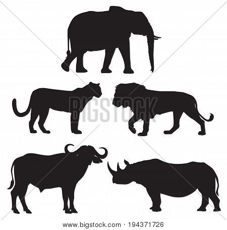 Africa's Big Five Animals: Elephant Lion Leopard Buffalo and Rhino