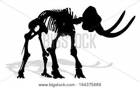 Silhouette of an ancient skeleton of a mammoth.