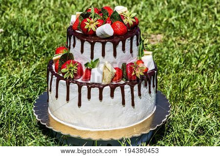 two tier cake with fresh strawberries on background of grass