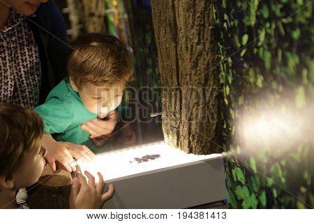 Children looking at herbarium in a museum