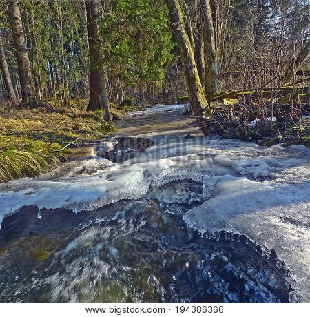 brook in a forest - spring thaw ice