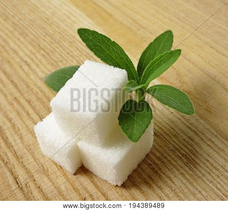 stevia rebaudiana and sugar on wooden background
