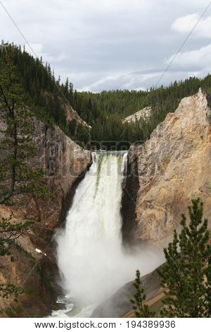 Upper falls of yellowstone river in Yellowstone National Park.