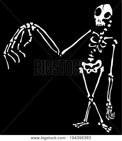Skeleton Halloween cartoon character white silhouette vector illustration horizontal isolated