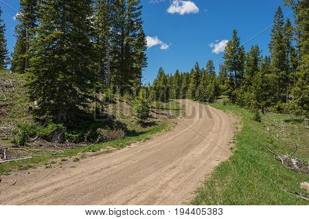 Rocky Mountain Dirt Road